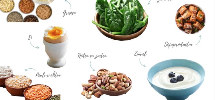 Voldoende eiwitten in een vegetarisch dieet